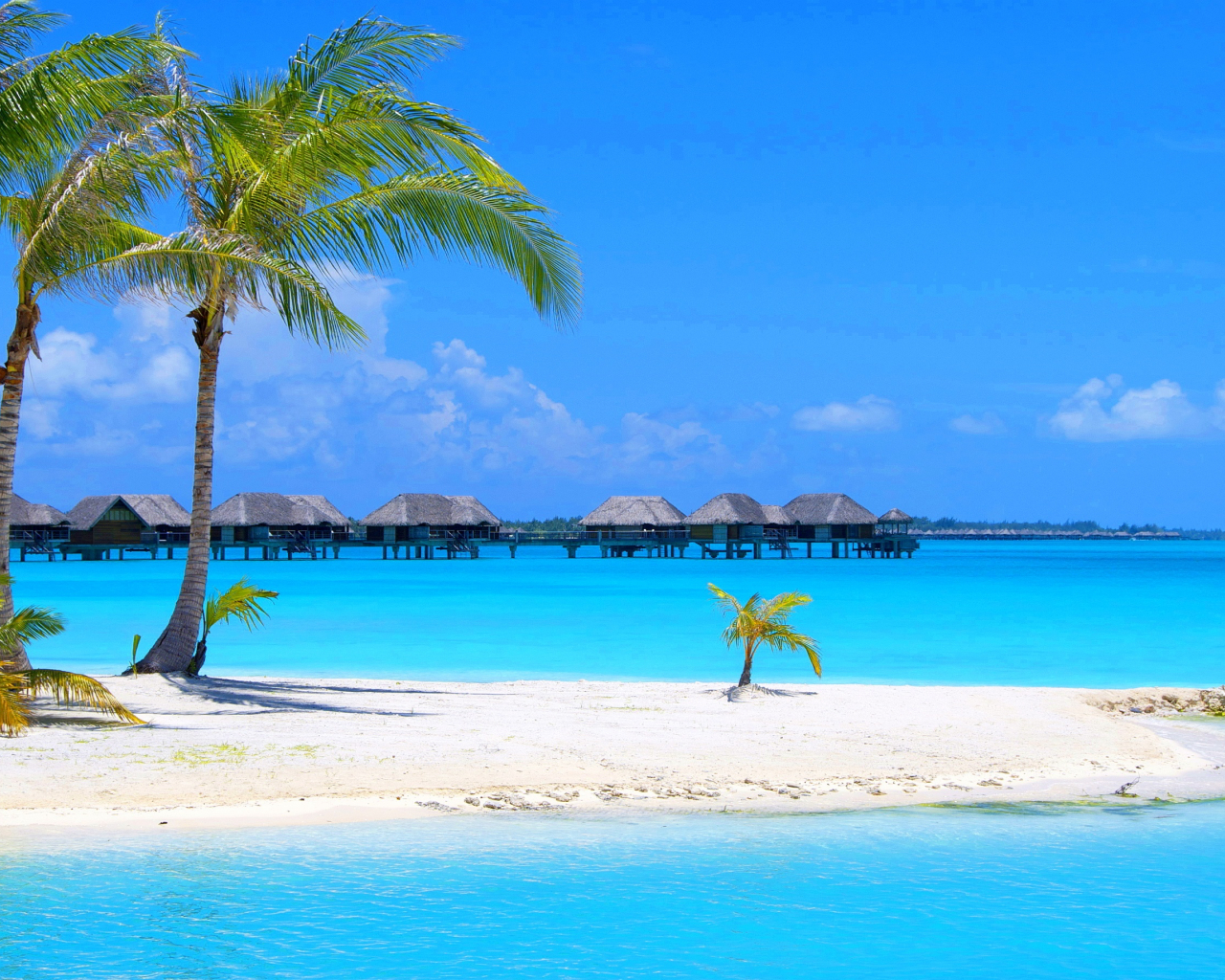 Free download 45 Beach Wallpaper For Mobile And Desktop In ...