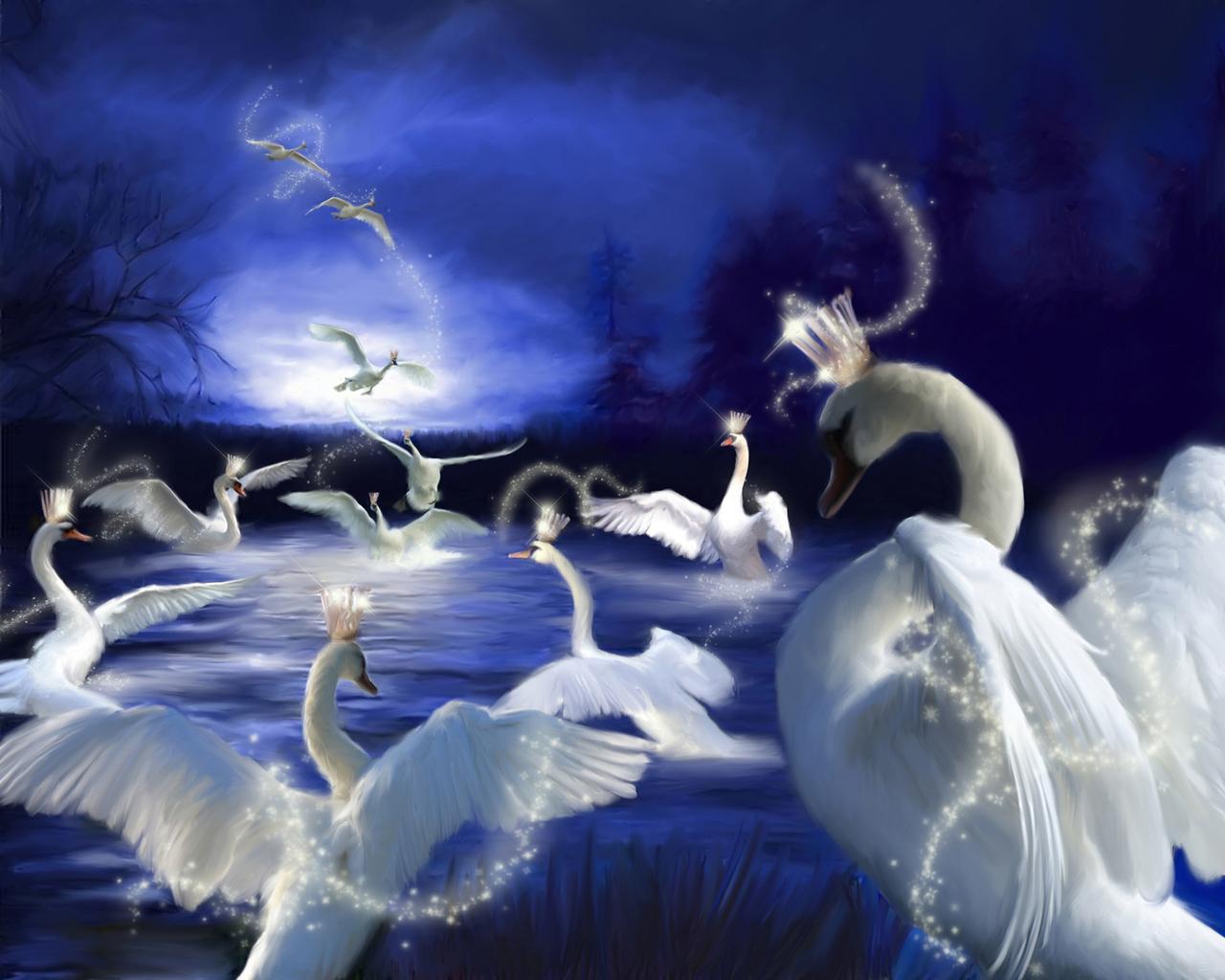 1280x1024px swan lake wallpaper wallpapersafari - Swan wallpapers for desktop ...