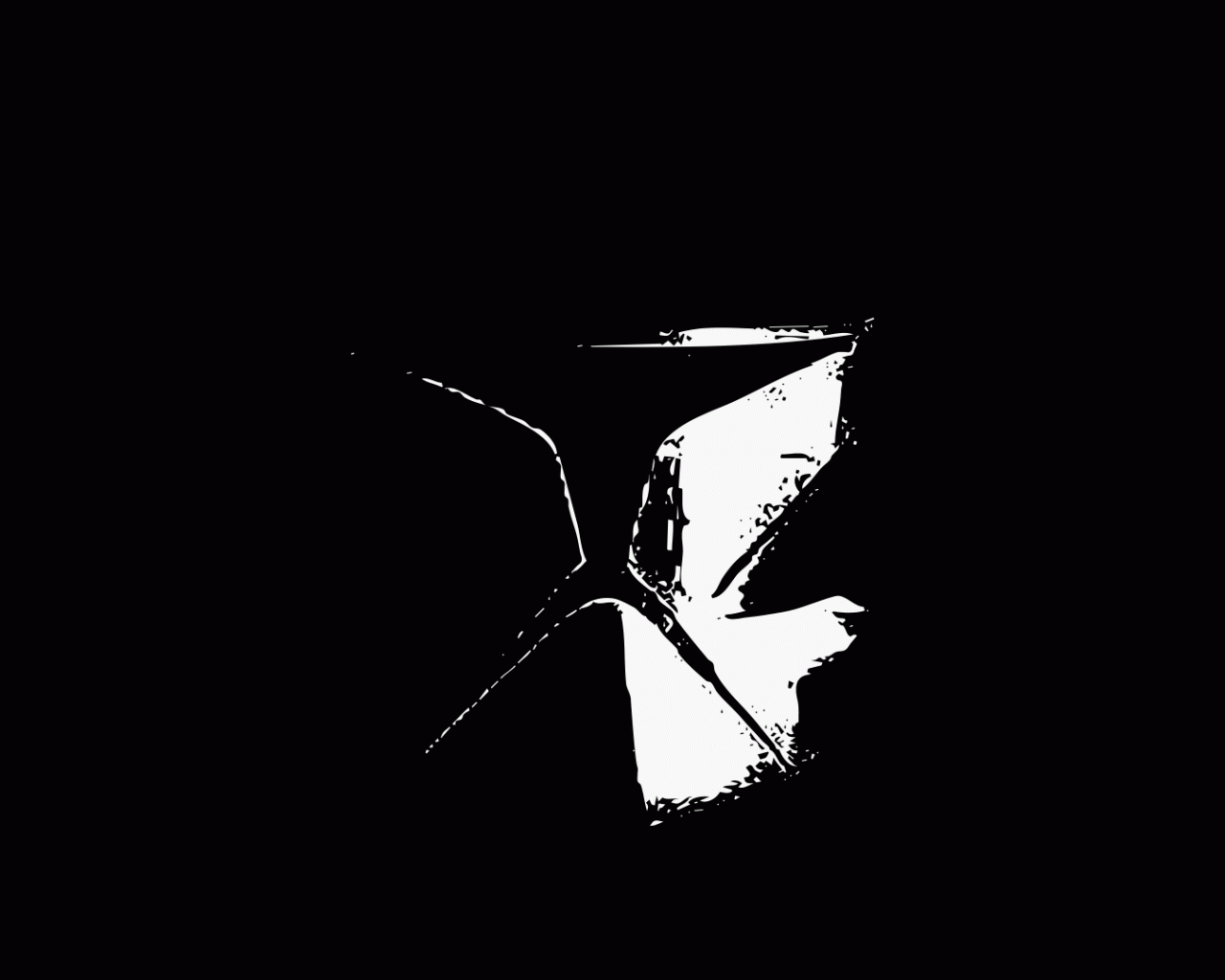 Free Download Clone Trooper Wallpaper Hd Clone Trooper Wallpaper 1920x1080 For Your Desktop Mobile Tablet Explore 73 Star Wars Clone Trooper Wallpaper Clone Trooper Wallpaper Shadow Trooper Wallpaper Star