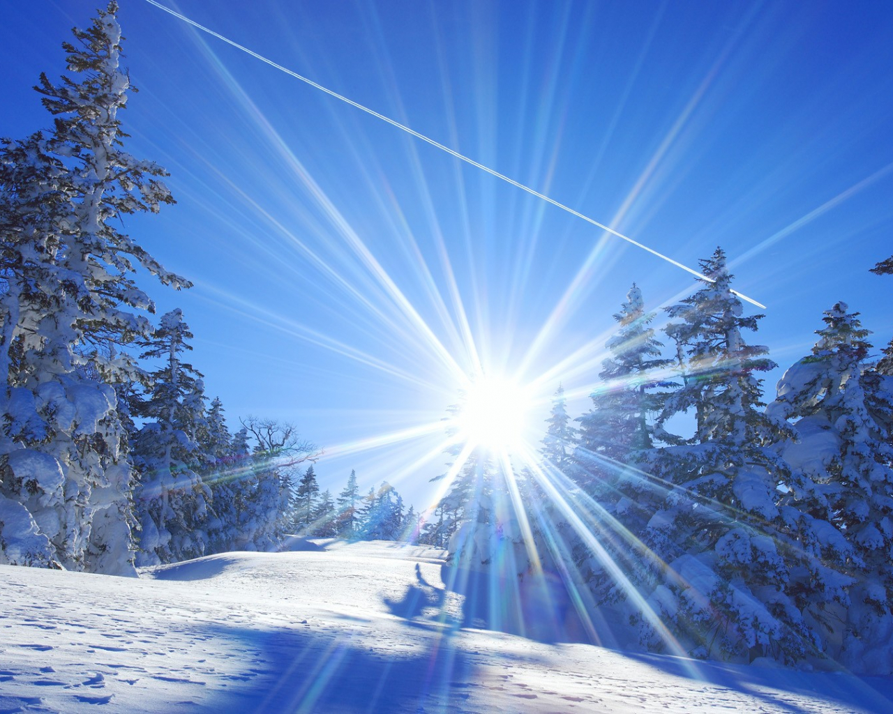 Free download 10 winter landscapes Cute wallpapers ...
