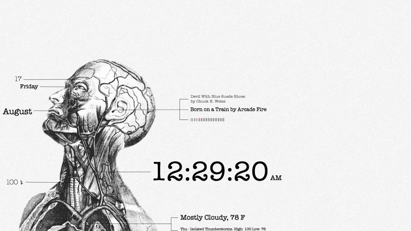 1440x900px Human Anatomy Wallpaper - WallpaperSafari