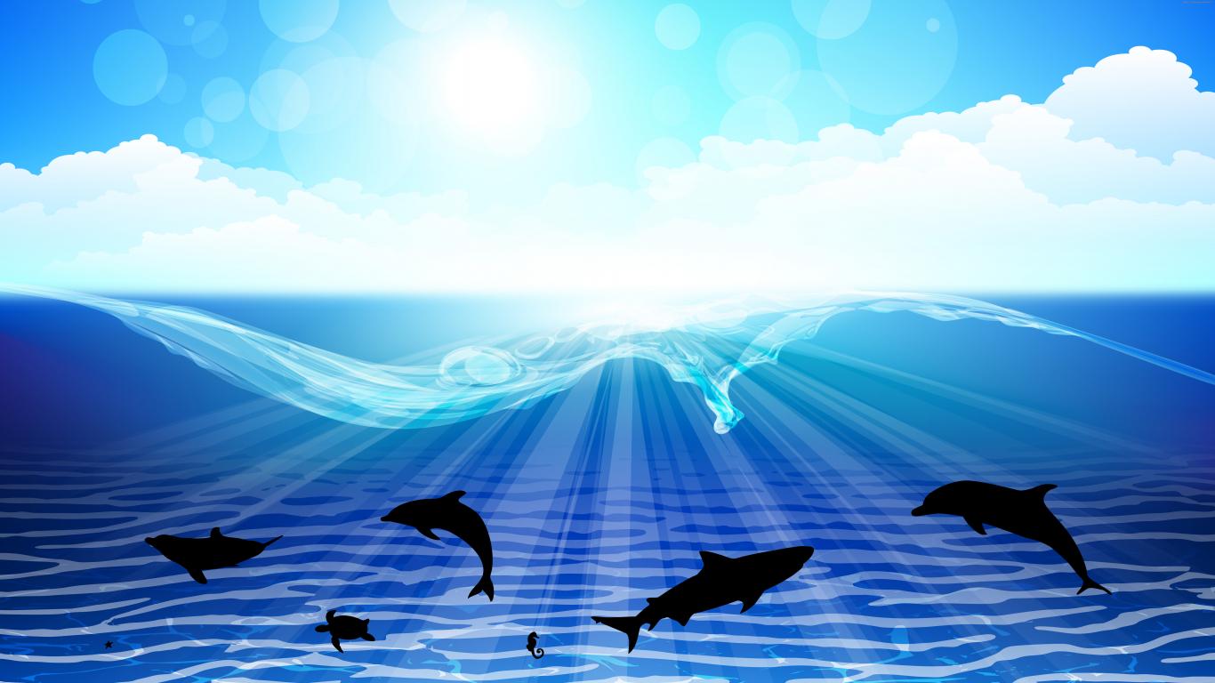 здесь океан в картинках слайд шоу всегда