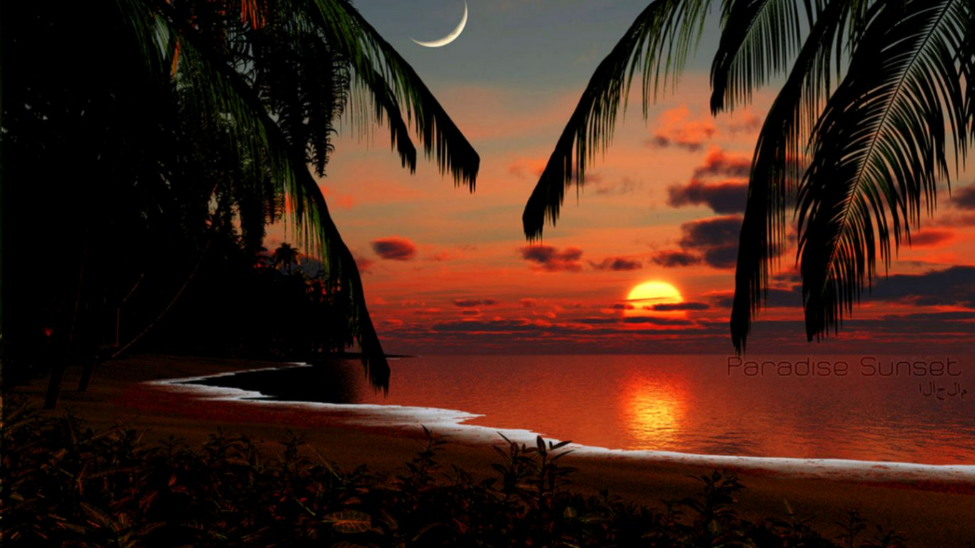 Tropical Sunset Wallpaper Zoom Wallpapers 1368x855 Download Resolutions Desktop 1366x768