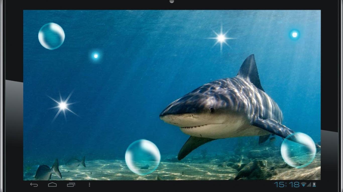 Free Download Shark Attack Live Wallpaper Screenshot