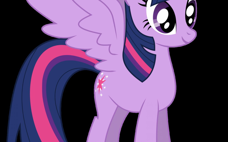 My Little Pony Princess Twilight