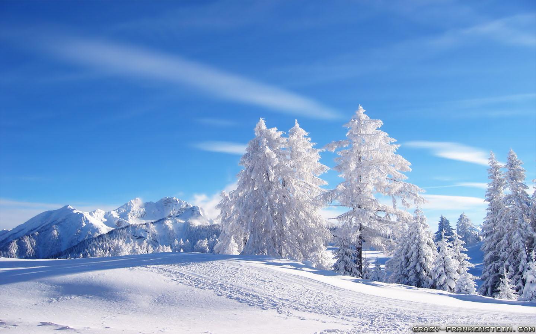 Free Download Winter Landscape Wallpapers Crazy Frankenstein