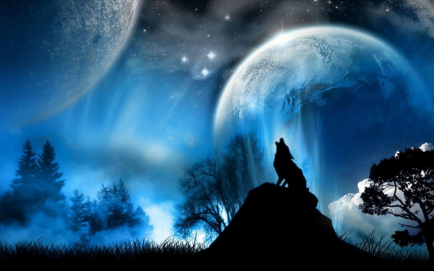 Free Download Bedroom Glow In The Dark Paint Interior Design Living Room Ideas 1600x1000 For Your Desktop Mobile Tablet Explore 50 Wolf Wallpaper For Bedroom Wolf Wallpaper Wolf Wallpaper