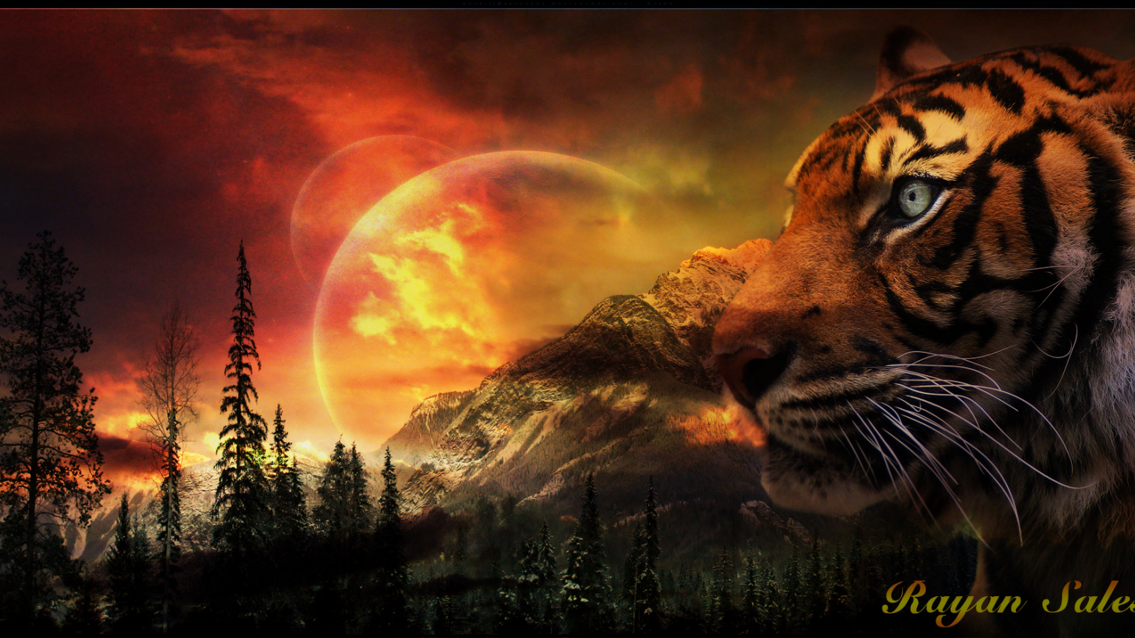 1848x978px cool tiger backgrounds - wallpapersafari