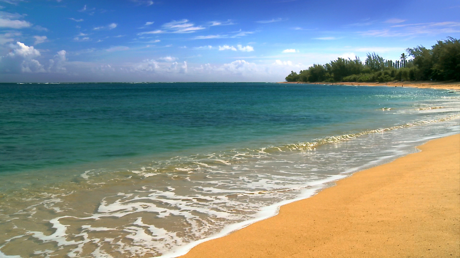 1920x1080px free wallpaper hawaii beach scenes - wallpapersafari