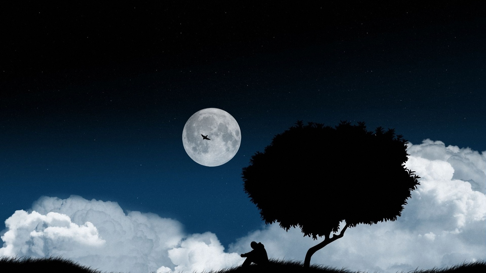 Free Download Man On The Moon Wallpaper Images Pictures Becuo