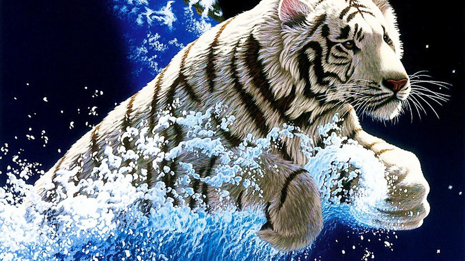 Cool Wallpapers Blog Amazing White Tiger 1600x1200 Download Resolutions Desktop 1600x900