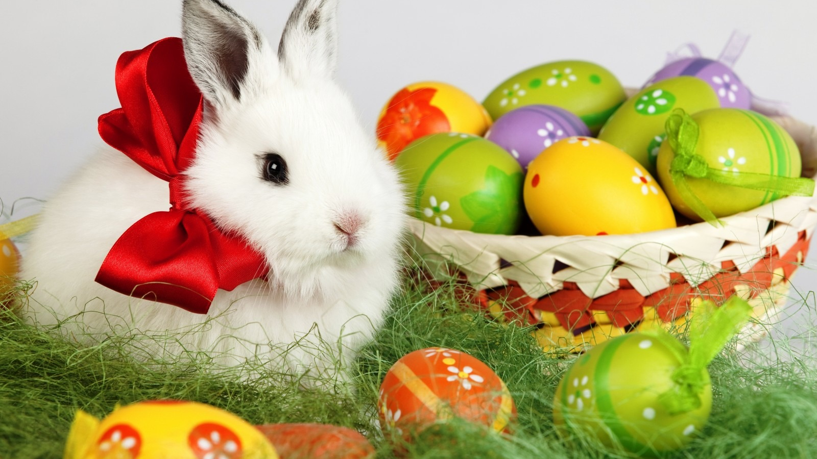 Free Download Easter Bunny Desktop Wallpaper 1600x1200 For Your