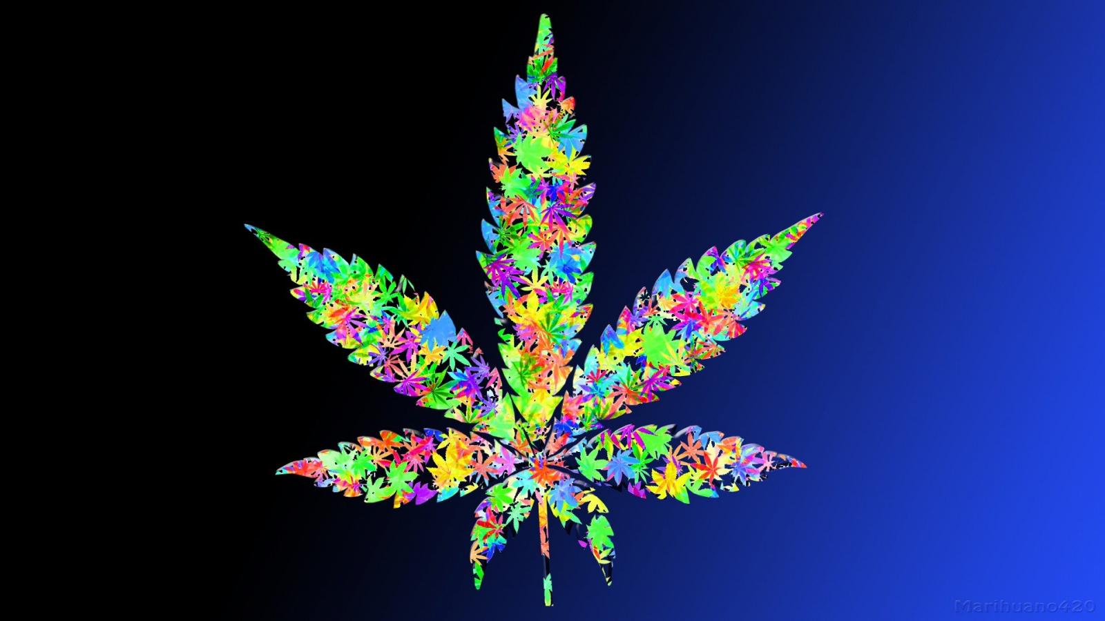 Free Download Leaf Drugs Leaves Marijuana Weeds Wallpaper 1920x1080 341187 1920x1080 For Your Desktop Mobile Tablet Explore 46 Pot Leaf Wallpaper Live Weed Wallpapers That Move Pot Leaf Wallpapers