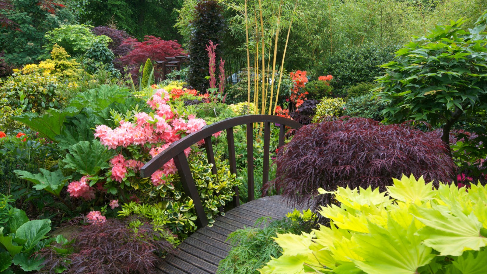 Free Download Four Seasons Garden The Most Beautiful Home Gardens
