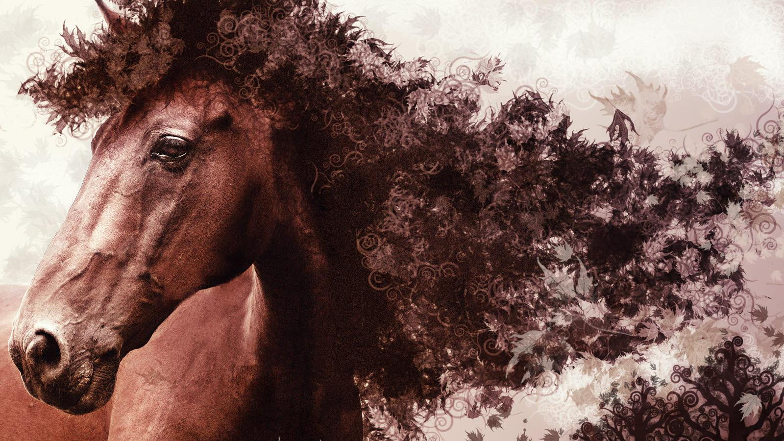 Free Download Horse Wallpaper Download Best Effect Artistic Horse