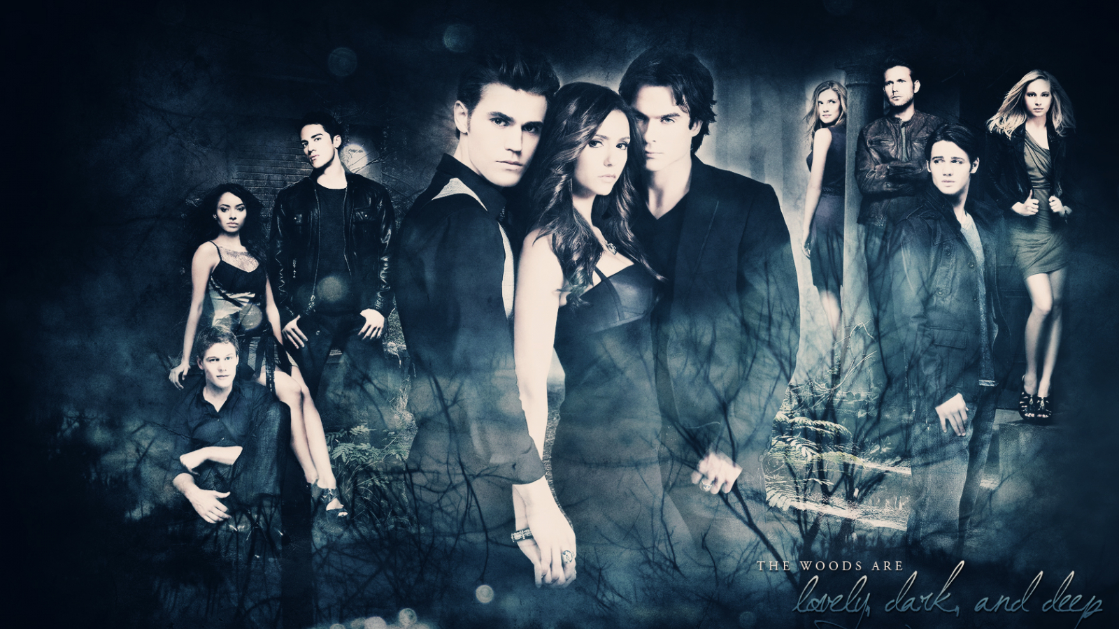 Free Download The Vampire Diaries The Vampire Diaries