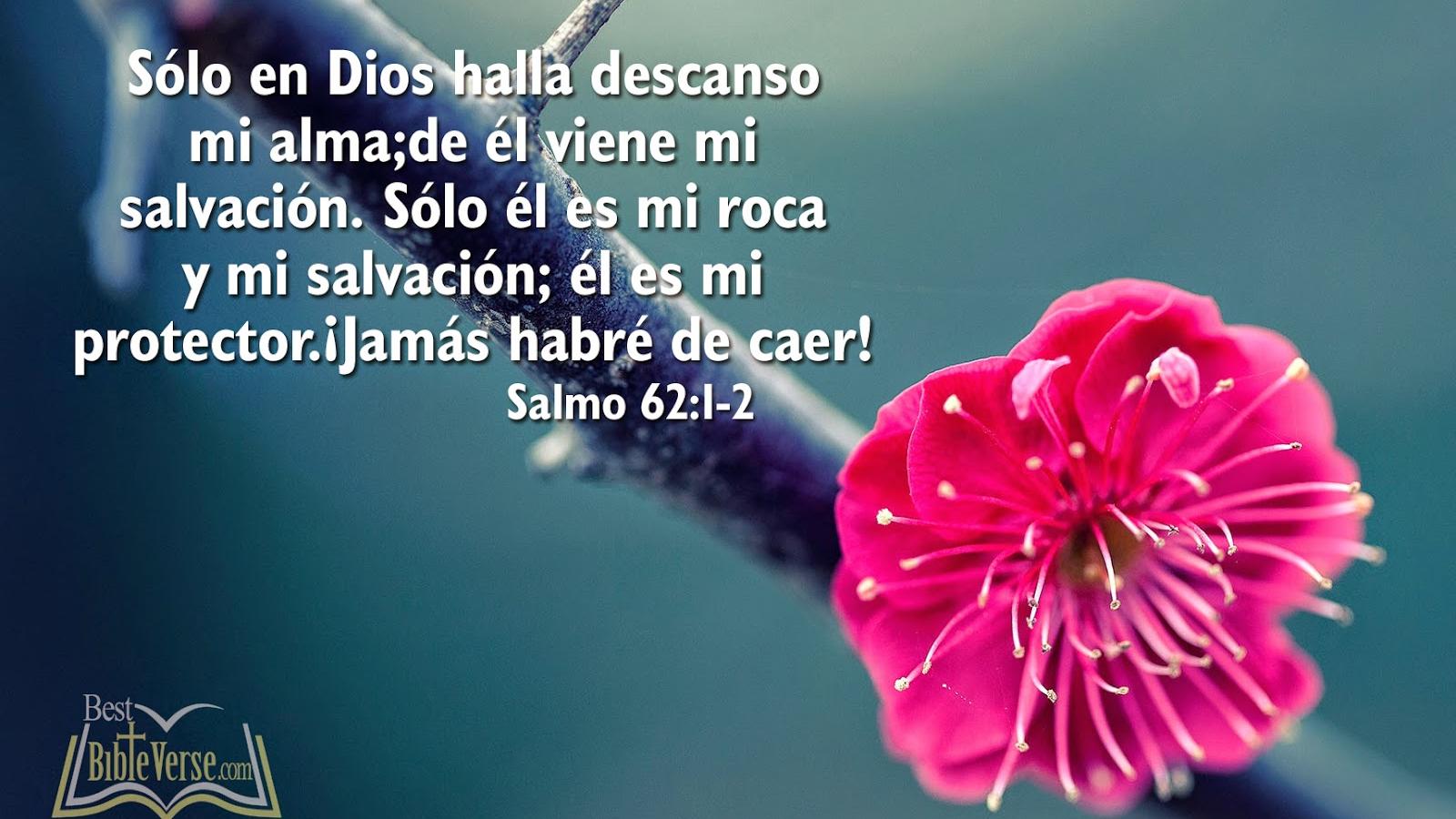 spanish bible verse wallpapers nice