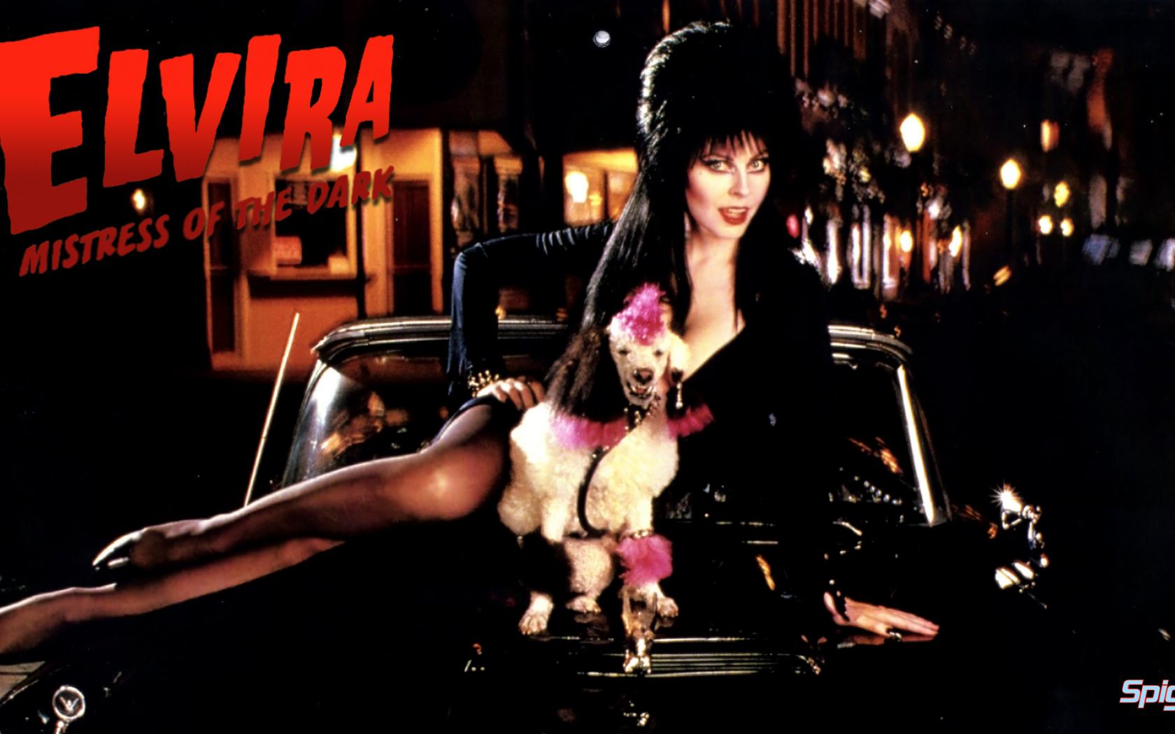 Free Download Elvira Mistress Of The Dark George Spigots Blog Page