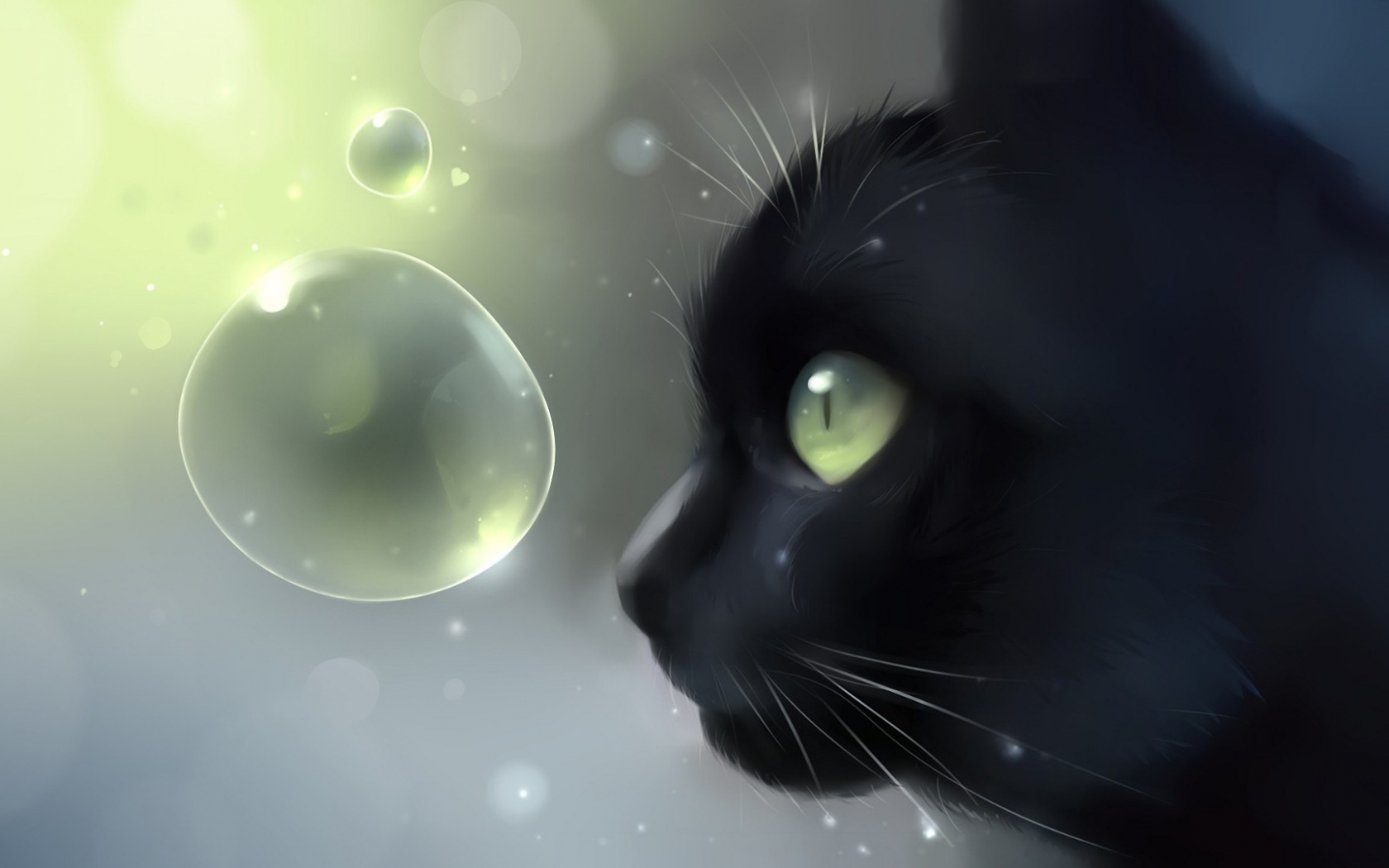 Free Download Showing Gallery For Cute Anime Black Cat Wallpaper 1920x1080 For Your Desktop Mobile Tablet Explore 48 Black Cat Wallpaper Drawings Cats Wallpaper Cat Wallpaper 1920x1080 Screensavers And Wallpaper Cats