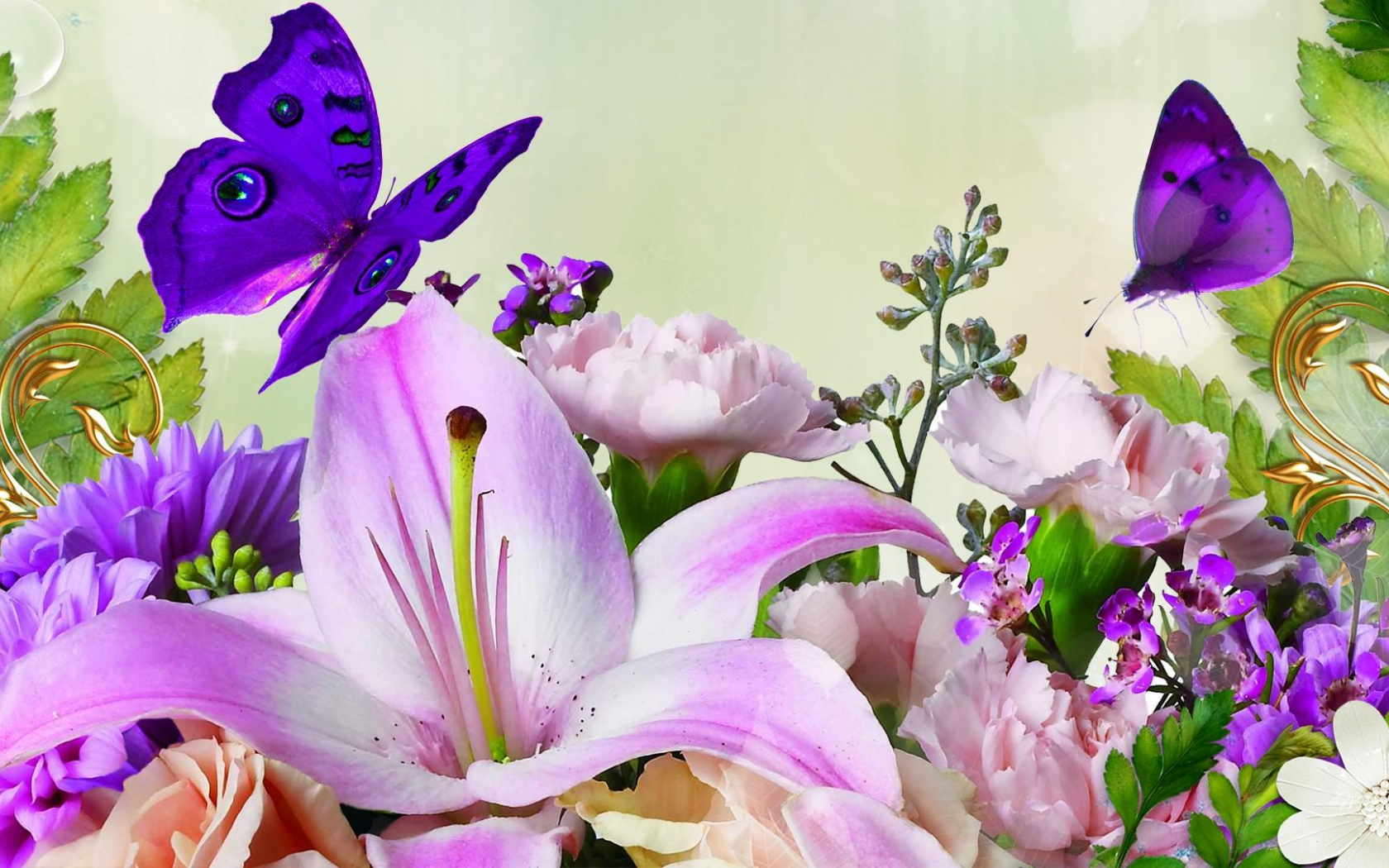 Free Download Funmozar Spring Flowers And Butterflies Wallpapers