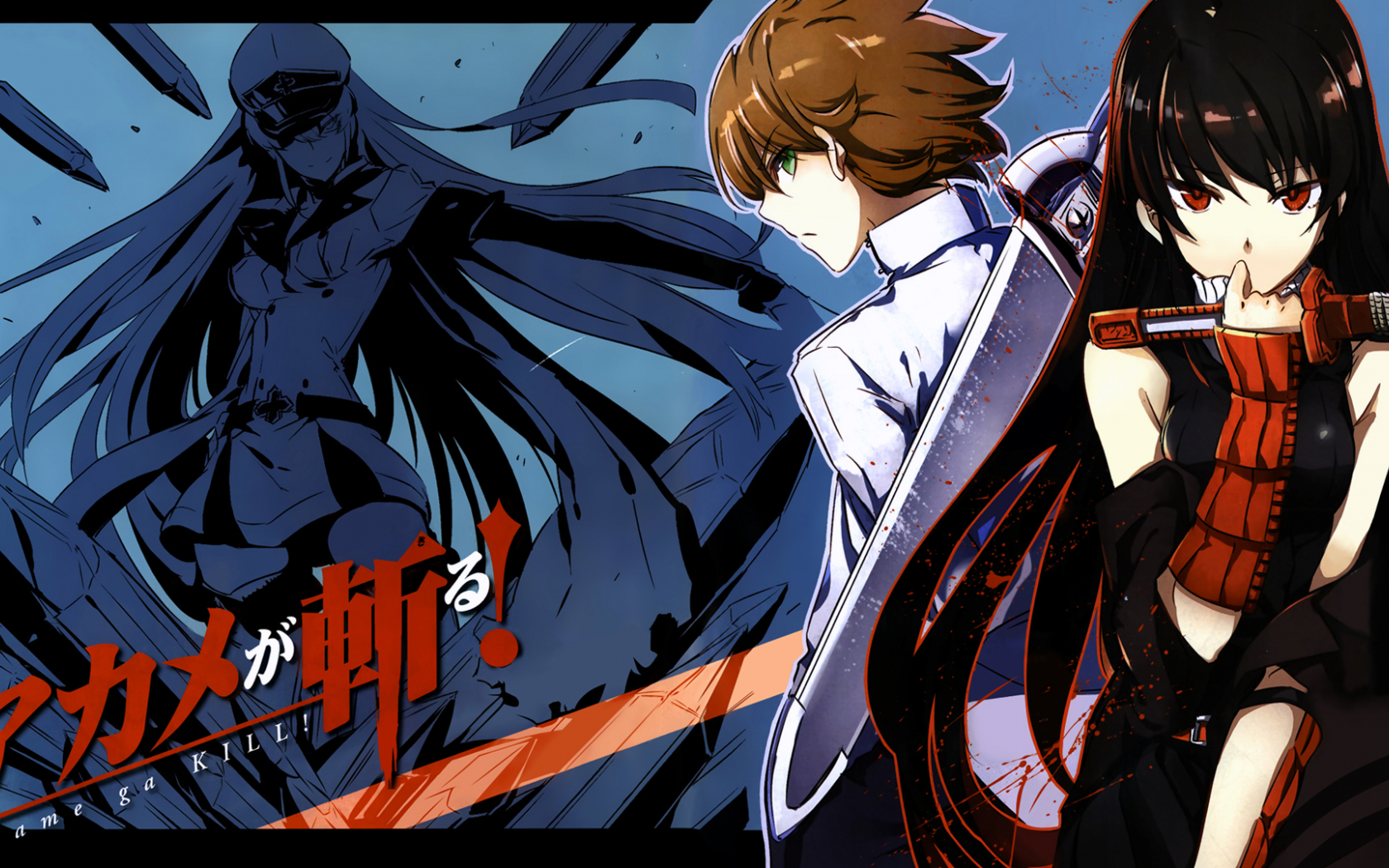 Free Download Top Akame Ga Kill Tatsumi And Leone Wallpapers