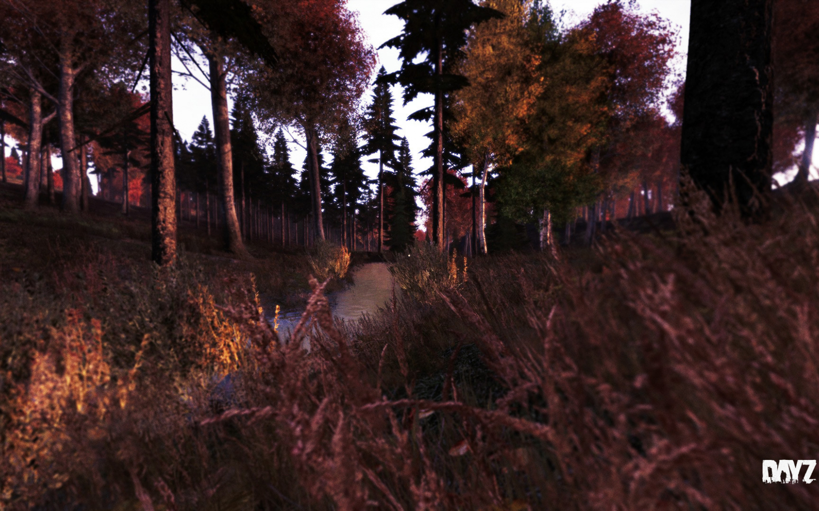 Free Download Dayz Standalone Wallpapers Dayz Tv 1920x1080