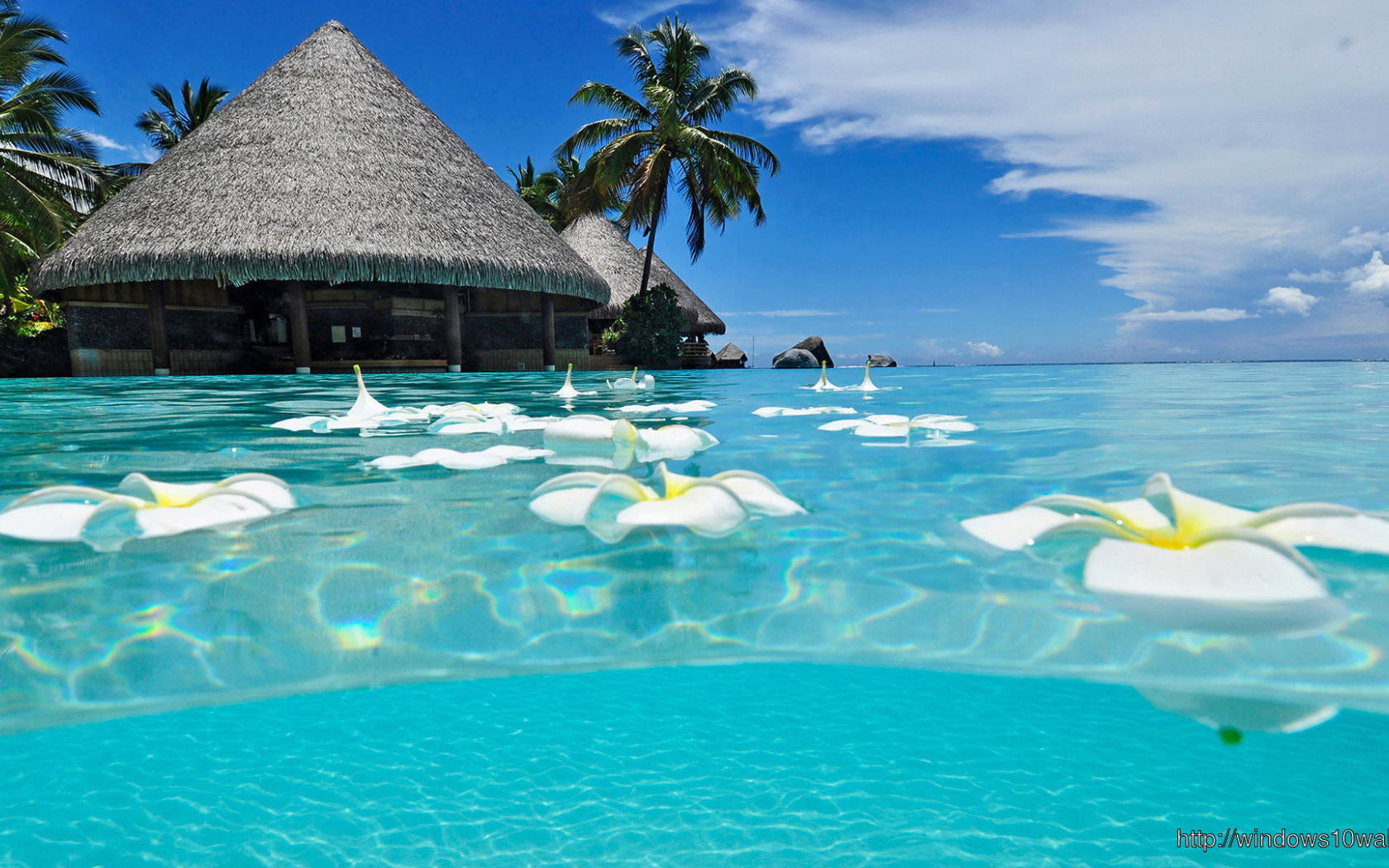 Free Download Paradise Beach Summer Hd Wallpaper Windows 10