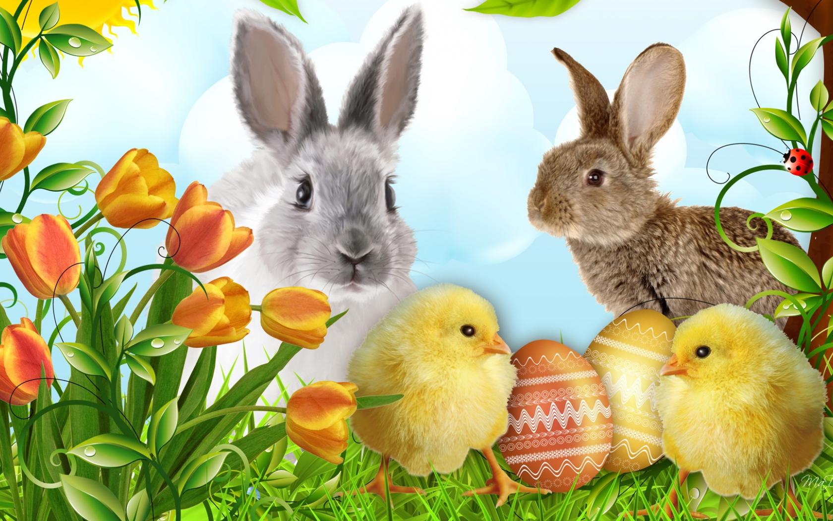 Free Download 50 Happy Easter Wallpaper Desktop On