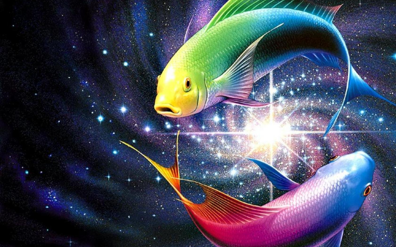 Free Download Rainbow Fish Wallpapers Hd 10689 Wallpaper Cool Walldiskpapercom 1680x1260 For Your Desktop Mobile Tablet Explore 47 Cool Fishing Wallpaper Fly Fishing Wallpaper Fishing Wallpaper Bass Fishing Desktop Wallpaper