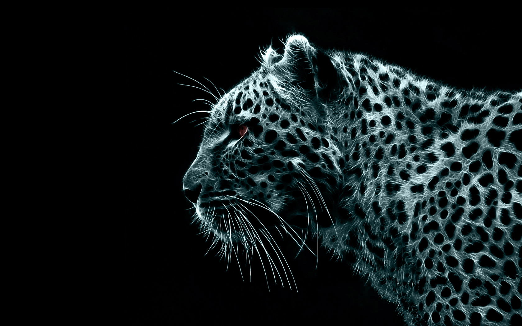 Free Download Beautiful Wild Panthers Wallpapers Tigers For Sale Hd Wallpapers 1680x1050 For Your Desktop Mobile Tablet Explore 44 Black Panther Hd Wallpaper Black Jaguar Wallpaper Black Leopard Wallpaper