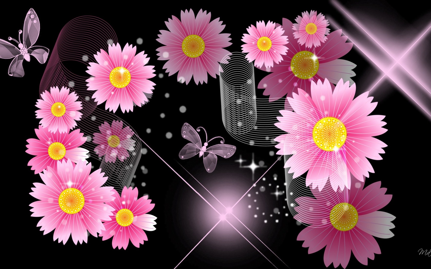 1920x1080px Pink And Black Flower Wallpaper Wallpapersafari
