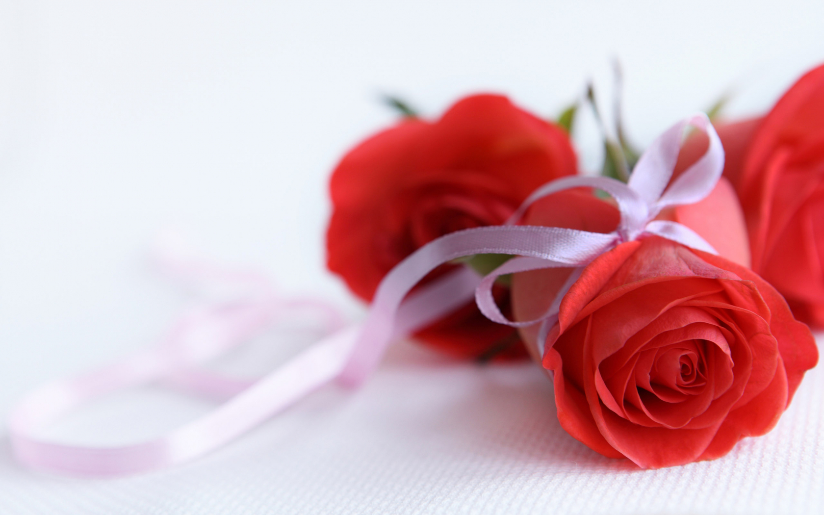 I love you pictures with roses New York Fashion Schools and Degrees Fashion Schools USA
