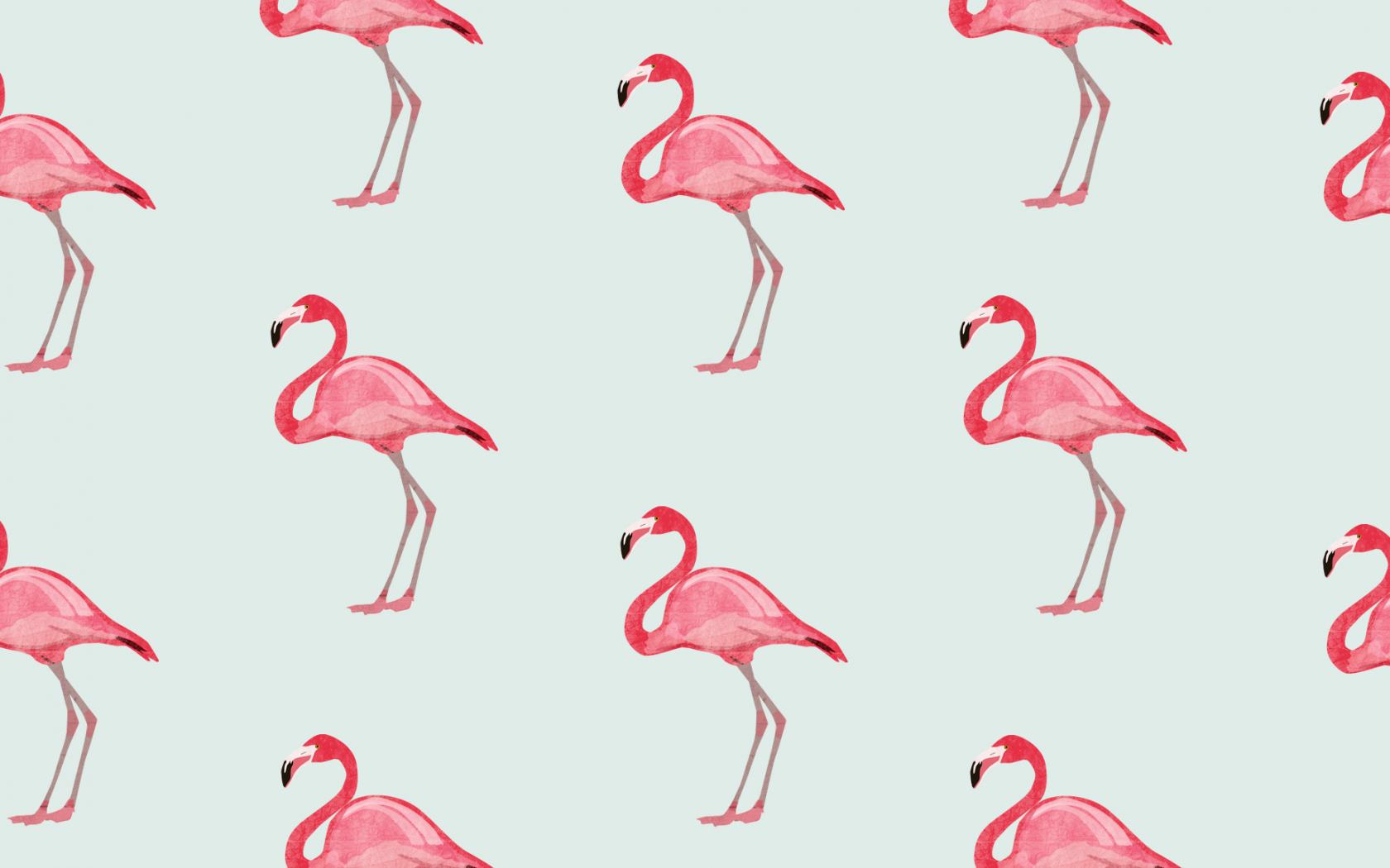 Free Download Flamingo Wallpaper Download 1856x1161 For Your