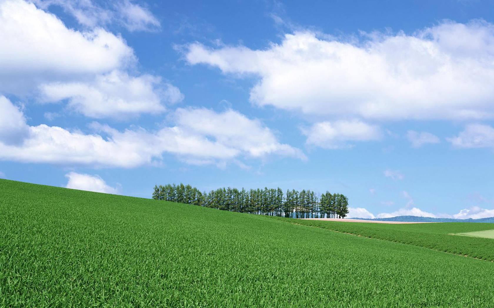 Зеленое поле возле горы  № 1077801 бесплатно