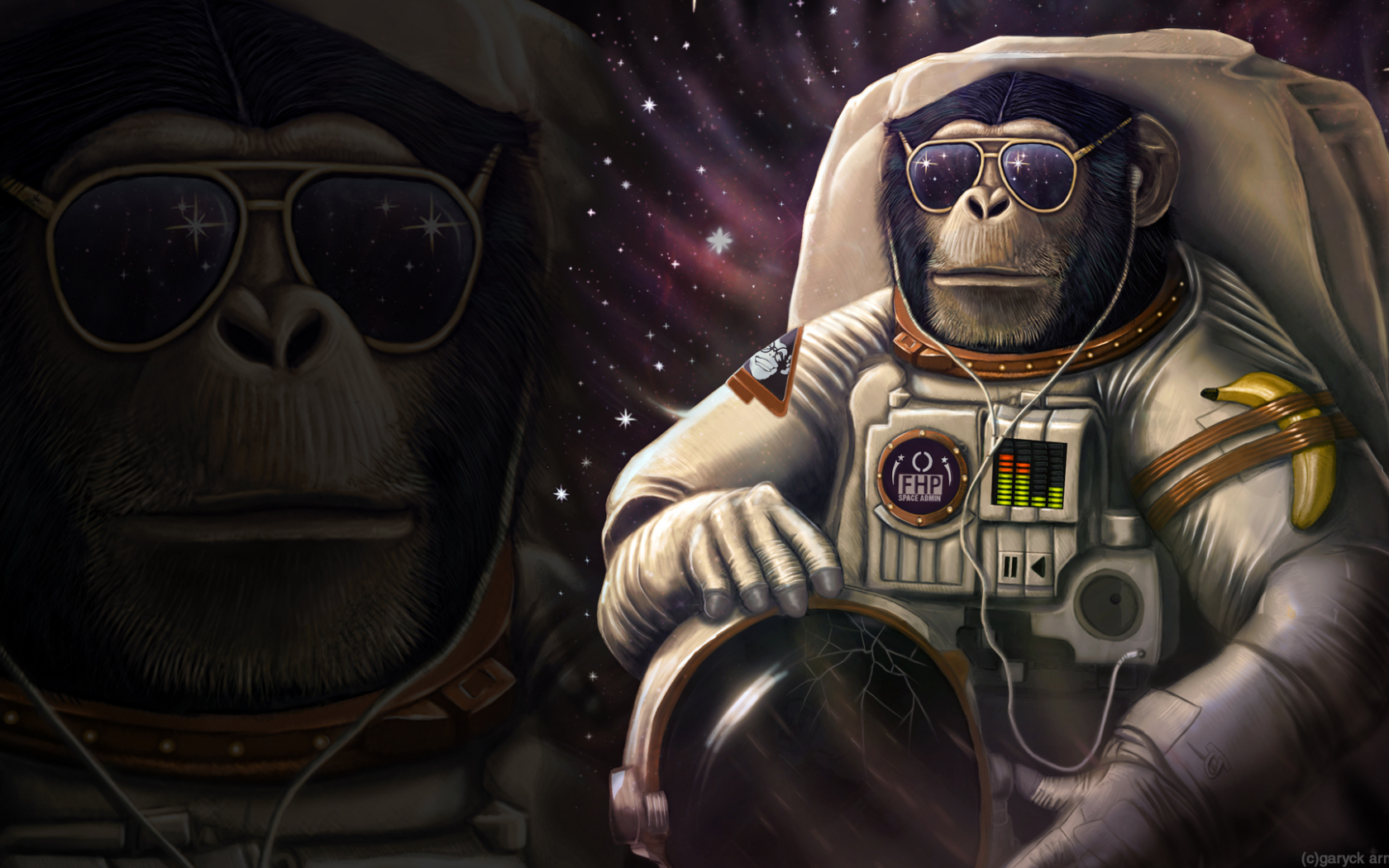 Free Download Monkey Sunglasses Astronaut Wtf Banana Wallpaper