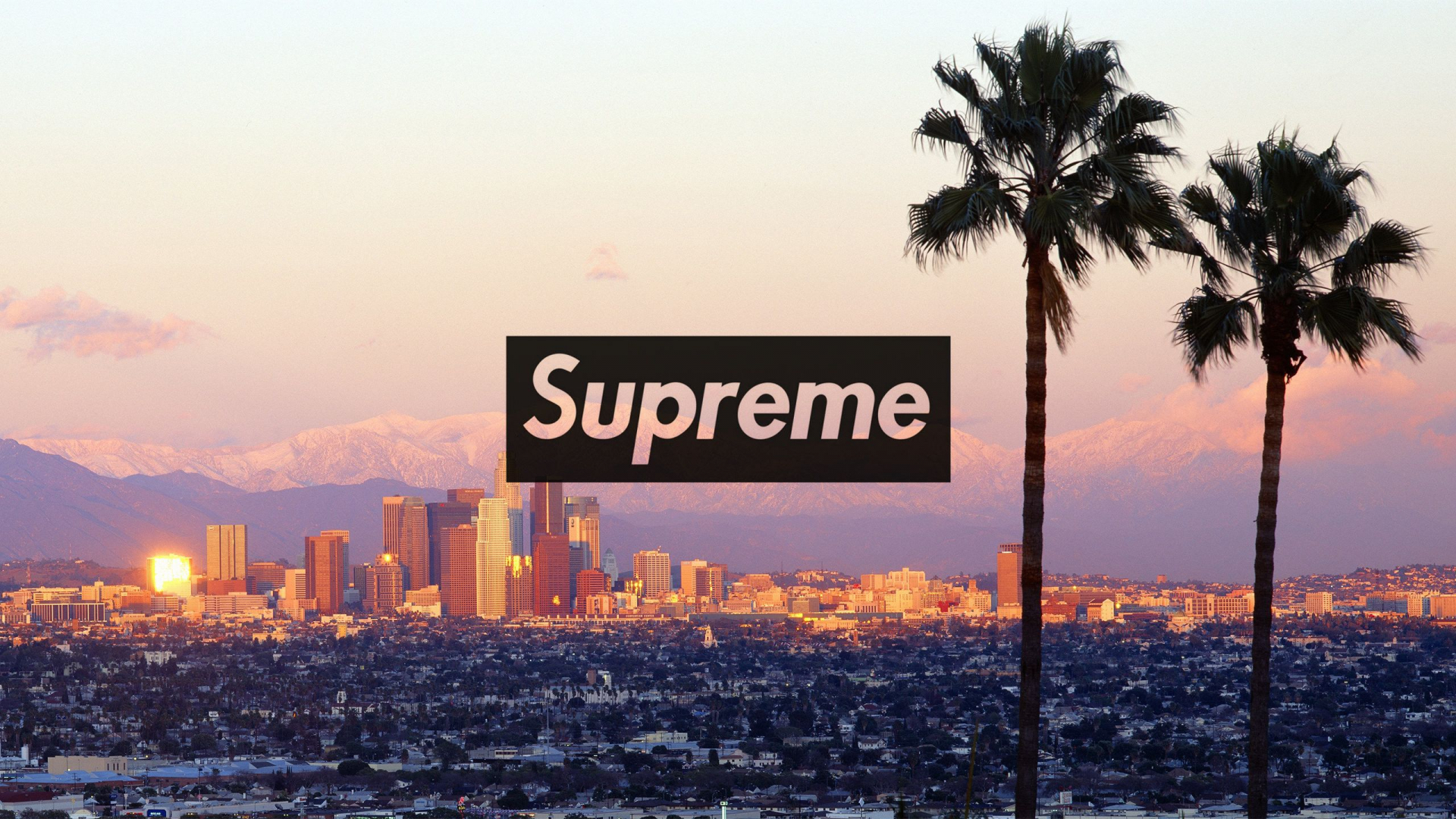 Free download 2560x1440 Download the Los Angeles Supreme ...
