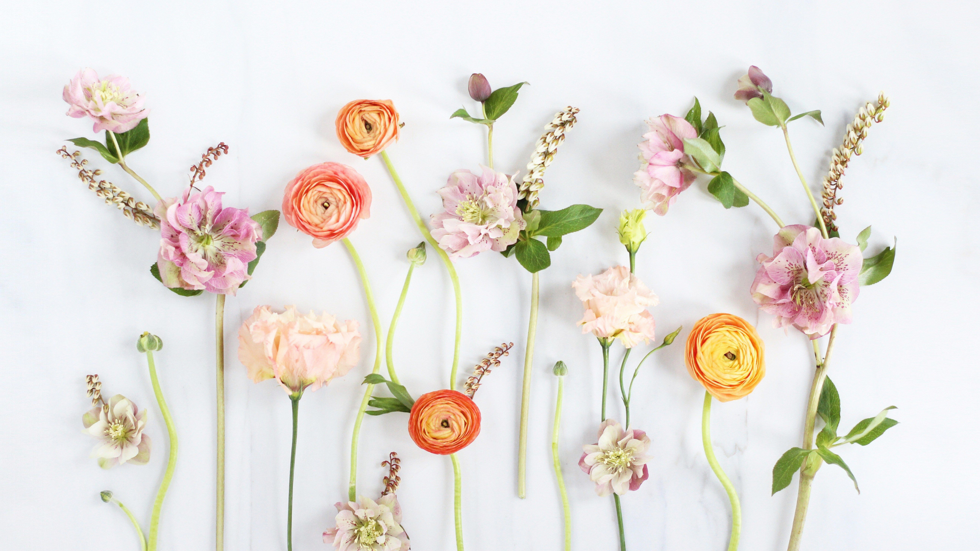 Free Download Floral Computer Wallpapers Top Floral Computer