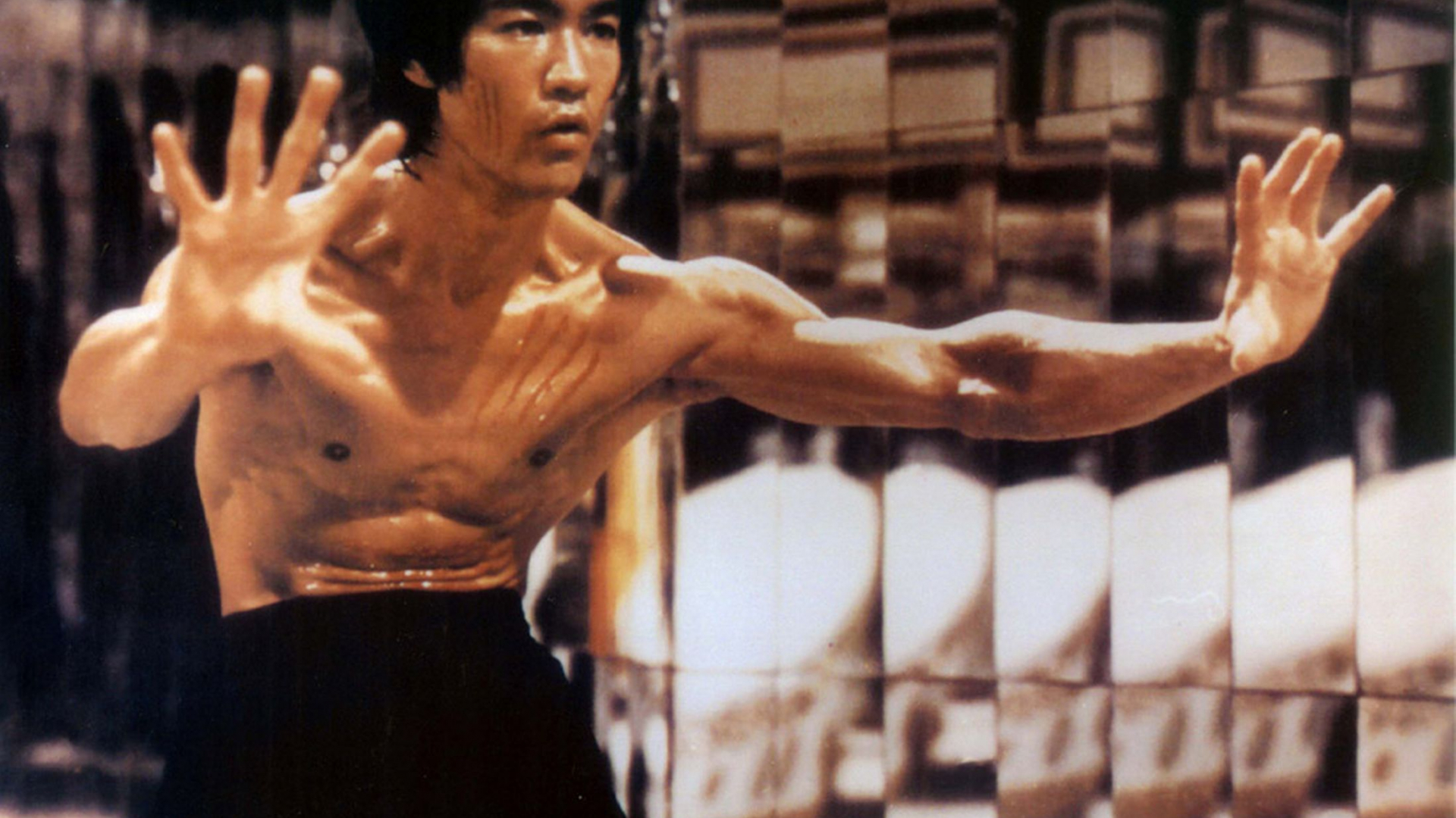 Free Download Enter The Dragon Bruce Lee Martial Arts Movie
