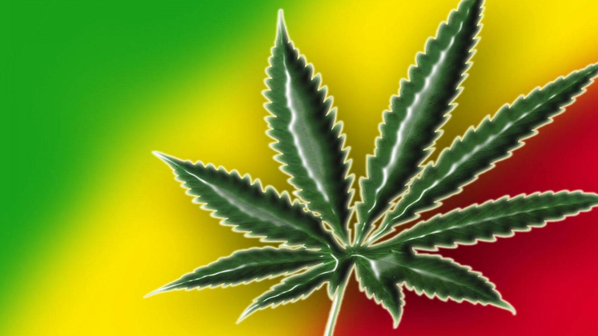 З марихуана картинки растение конопля мужское