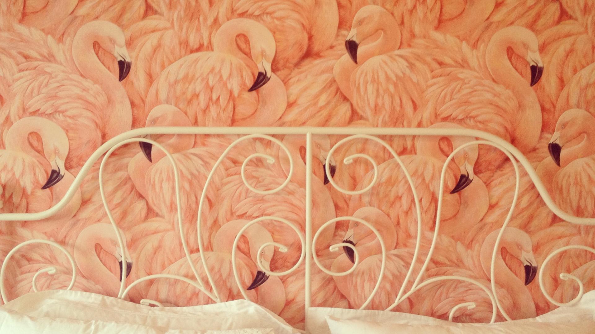 Обои с фламинго для стен леруа мерлен