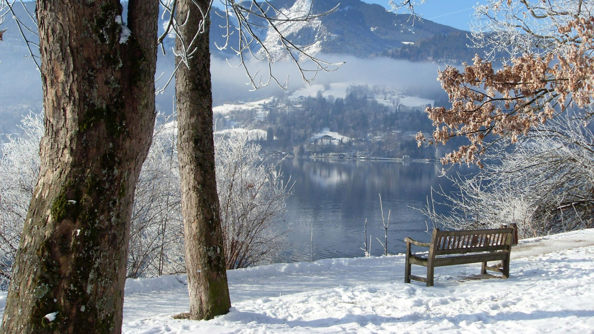 Free Download Nature Winter Wallpapers Hd 1920x1080 For Your