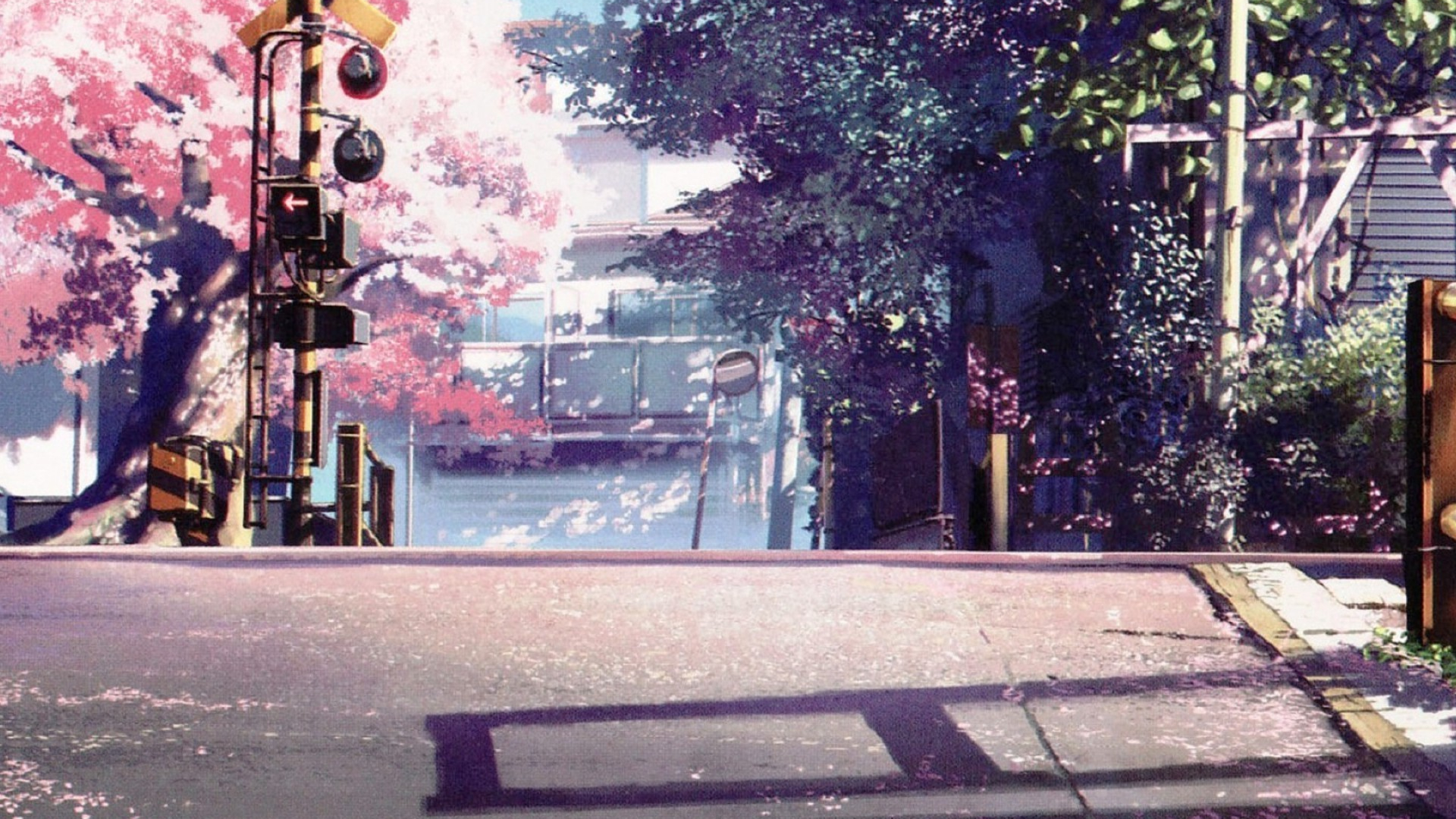 Free Download 5 Centimeters Per Second Wallpaper 79 Wallpapers Hd