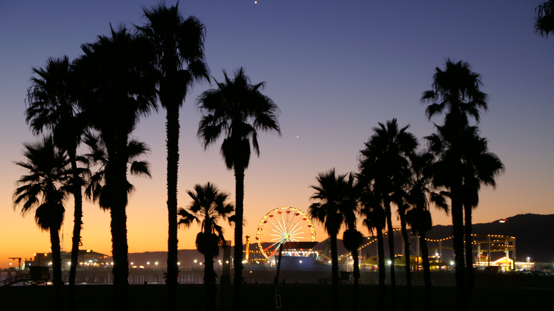 Free download California Palm Trees