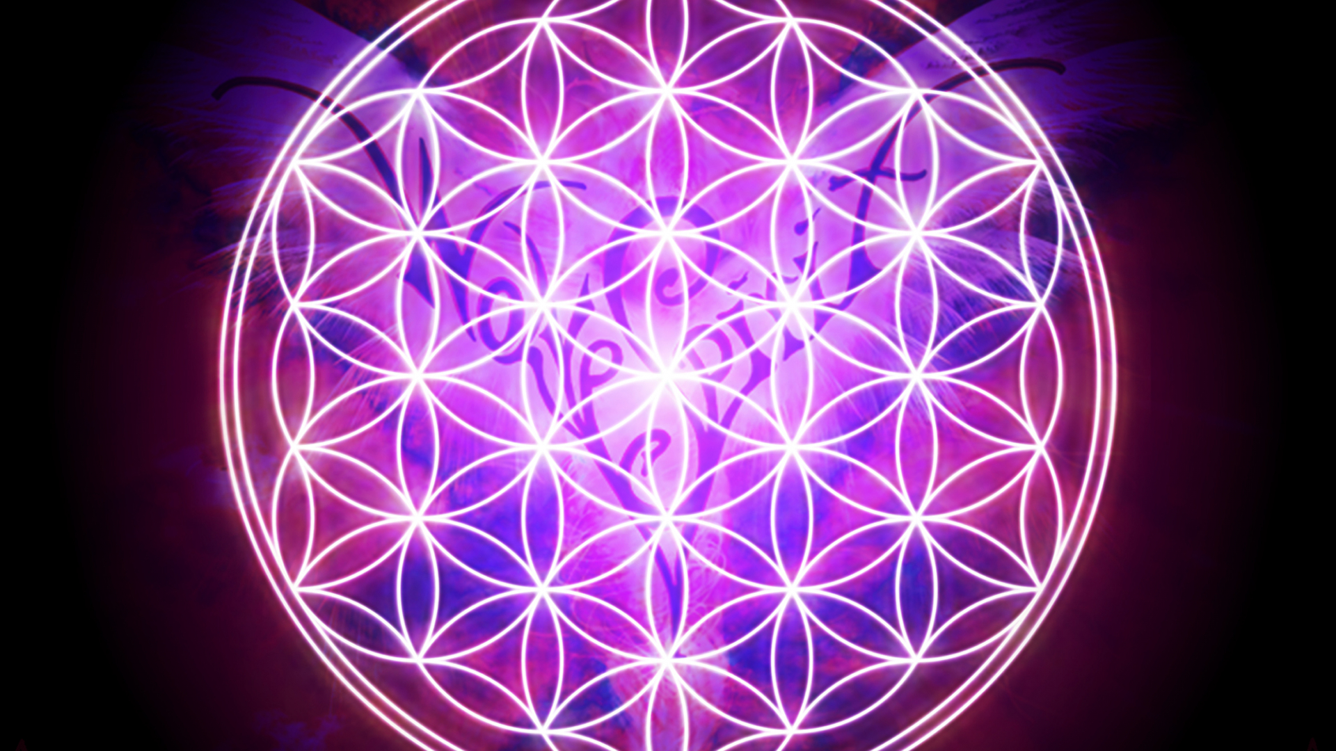 Free Download Flower Of Life Wallpaper Flower Of Life Iphone