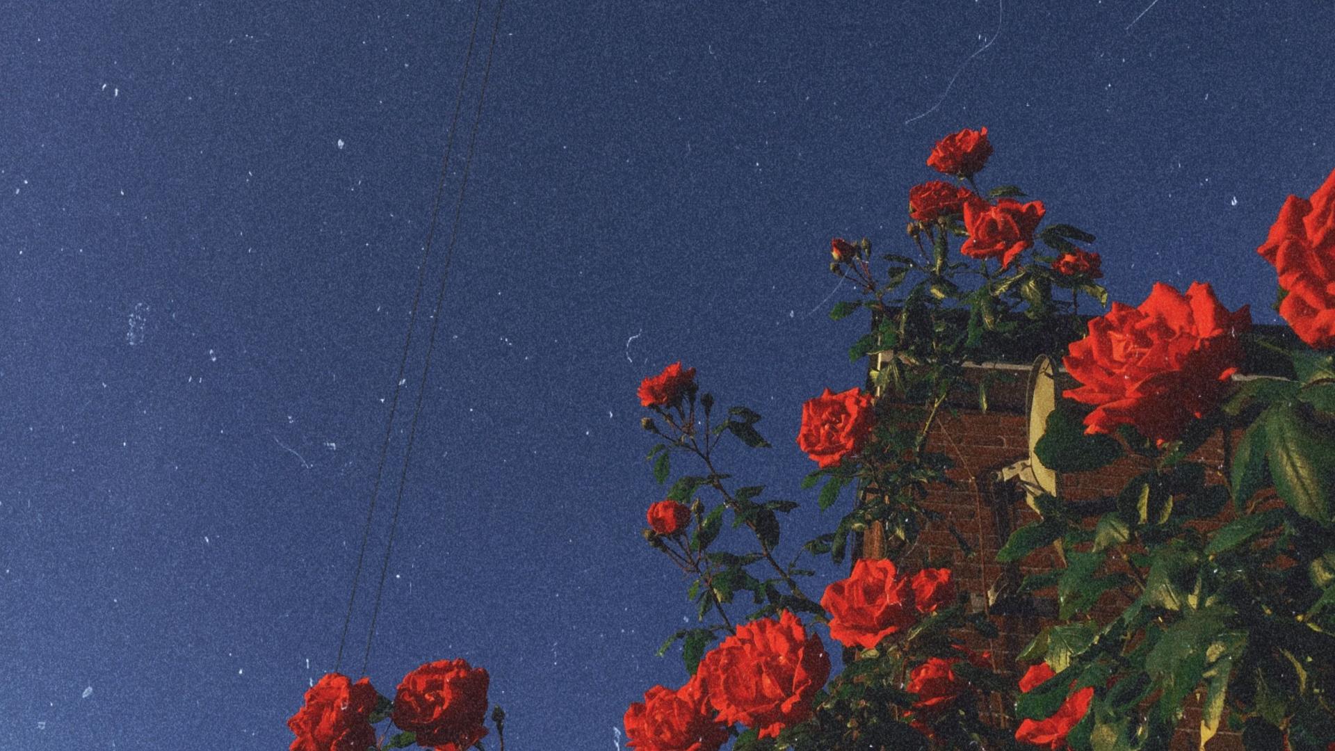 Retro Aesthetic Desktop Wallpaper Tumblr Hd