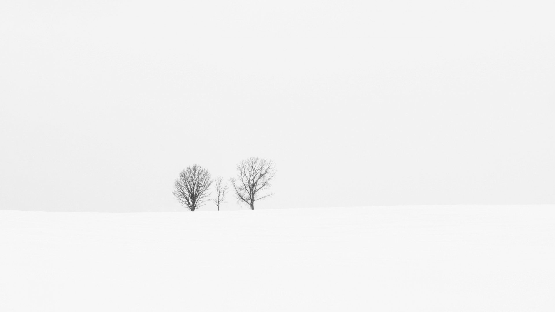 Free Download White Minimalist Desktop Wallpapers Top White Minimalist 5120x3200 For Your Desktop Mobile Tablet Explore 46 White Minimalist Wallpapers White Minimalist Wallpapers Minimalist Backgrounds Minimalist Wallpapers