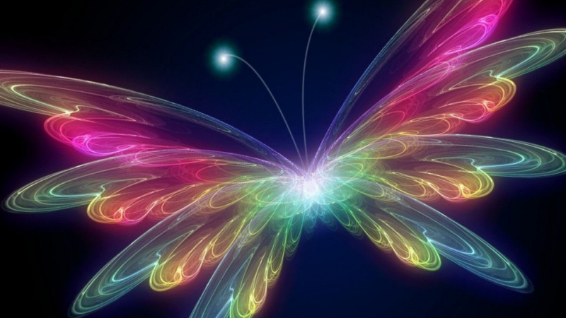 Free Download Very Beautiful 3d Hd Hq Colorful Butterfly Wallpaper Windows Mobile 6 960x800 For Your Desktop Mobile Tablet Explore 49 Beautiful Wallpapers For Mobile Hd Android Hd Wallpapers