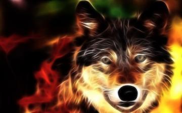 Cool Animal Desktop Backgrounds   New HD Wallpapers