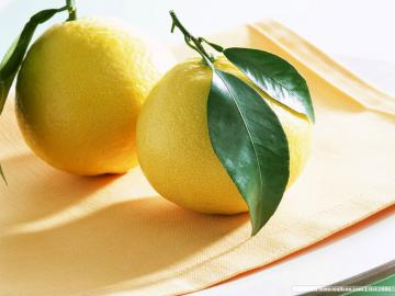 Lemon Wallpaper   Fruit Wallpaper 6334028