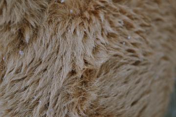 Frozen fur   wallpaper by Pandasquid